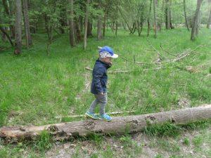 Beim Waldpass mußten viele Prüfungen bestanden werden.