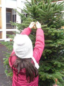 Ich darf unseren Tannenbaum im Innenhof schmücken.