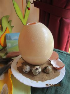 Welche Eierarten gibt es?