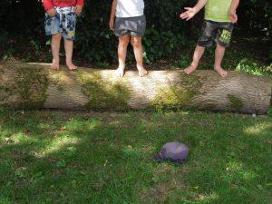Im Garten haben wir Baumstämme zum Sitzen bekommen. Jetzt könne wir unseren Morgenkreis draußen machen.