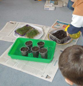 Wir planzen unsere Samen ein.
