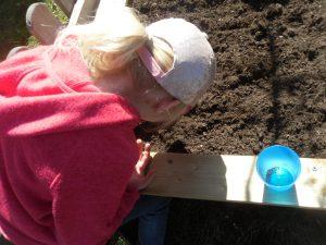 Wir bepflanzen unser Hochbeet.